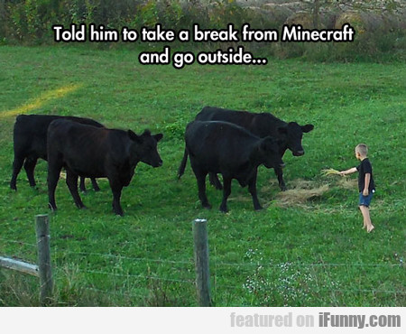 Told Him To Take A Break From Minecraft...