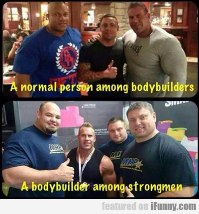 A Normal Person Among Bodybuilders...