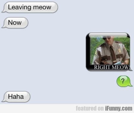 Leaving Meow. Now. Right Meow...