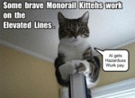 Some Brave Monorail Kittehs.