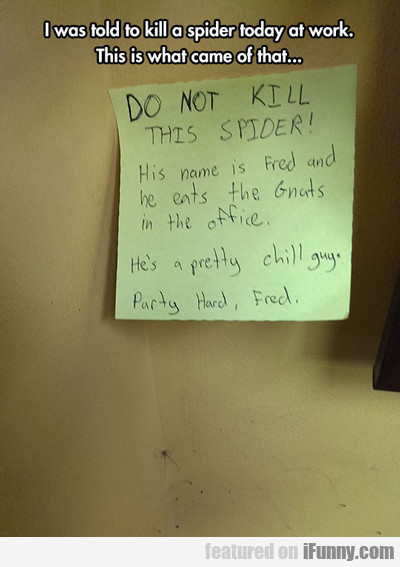 i was told to kill a spider...