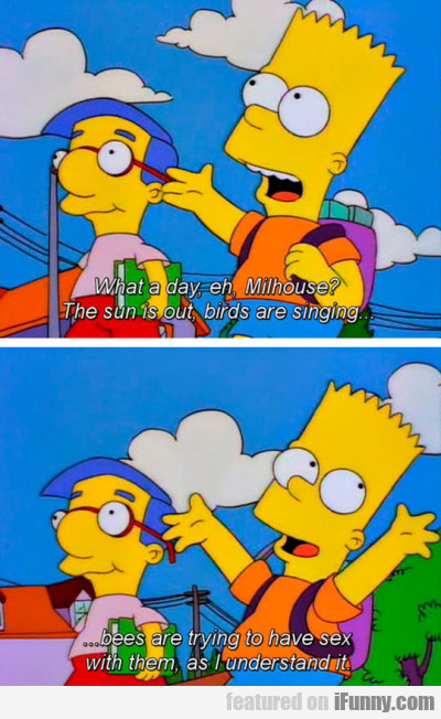 What a day eh Milhouse? - The sun is out..