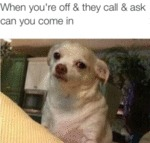 When You're Off And They Call And Ask...
