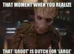 That Moment When You Realize That Groot Is...