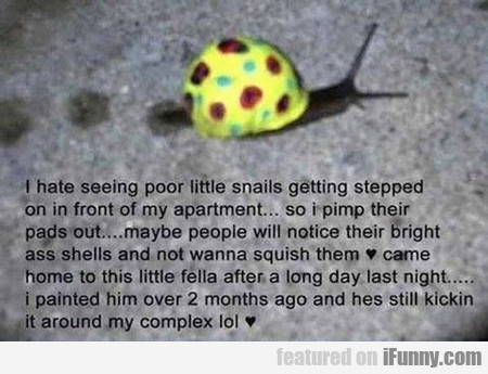 I Hate Seeing Poor Little Snails Getting Stepped..