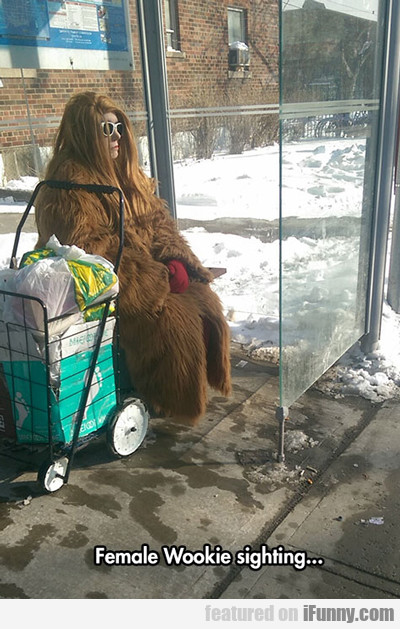 Female Wookie Sighting...