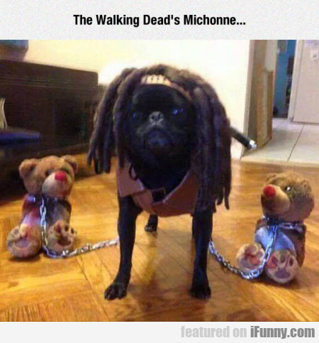 The Walking Dead's Michonne