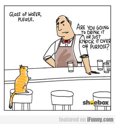 Glass of water please. Are you going to...