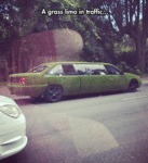 A Grass Limo In Traffic...