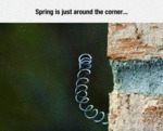 Spring Is Just Around The Corner...