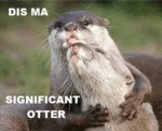 Dis Ma Significant Otter...