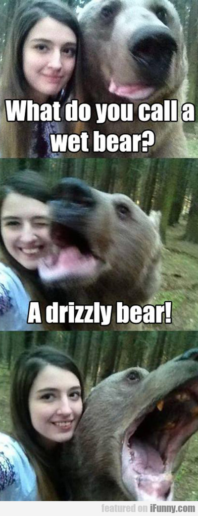 what do you call a wet bear...