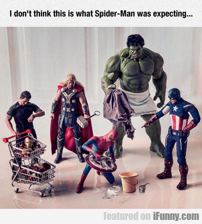i don't think this is what spider-man was...
