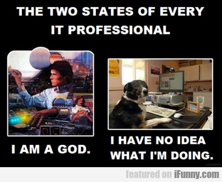 The Two States Of Every It Professional