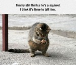 Timmy Still Thinks He S A Squirrel