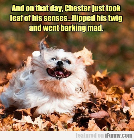 and on that day chester hust took