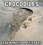 Crocodiles Can Now Fly Or Teleport...