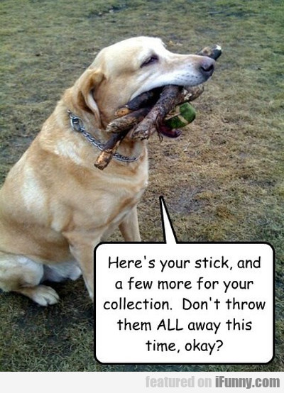 Here's Your Stick And A Few More