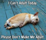I Cant Adult Today Please Dont Make.