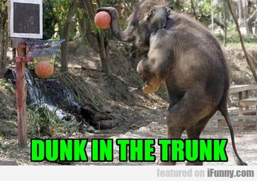 Dunk In The Trunk