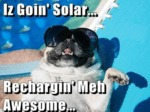 Iz Goin Solar