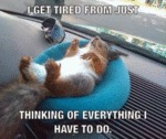 I Get Tired From Just Thinking Of Everything...