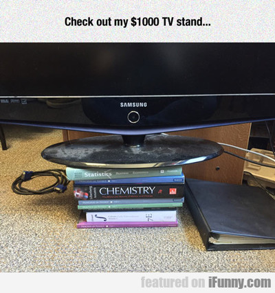 Check Out My $1000 Tv Stand....