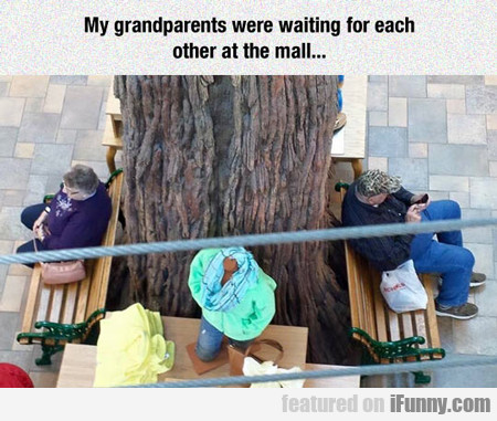 my grandparents were waiting for each other...