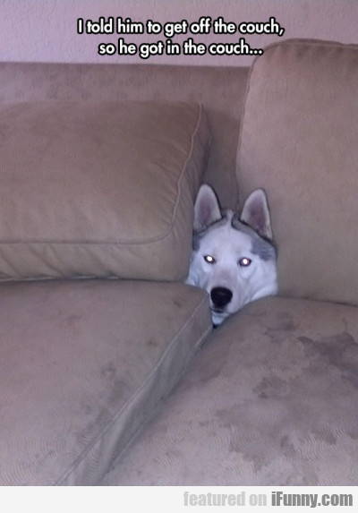I Told Him To Get Off The Couch So He Got...