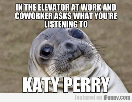 In The Elevator At Work...