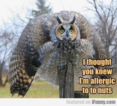 I Thought You Knew I M Allergic To To Nuts