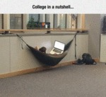 College In A Nutshell...