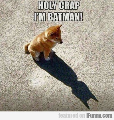 Holy Crap I M Batman