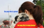 Da Pug Life Is Great. Da Hug Life Is Even Better