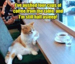I've Pushed Four Cups Of Coffee From The Table...