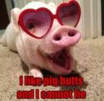 I Like Pig Butts And I Cannot Lie...