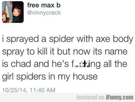 I Sprayed A Spider With Axe Body