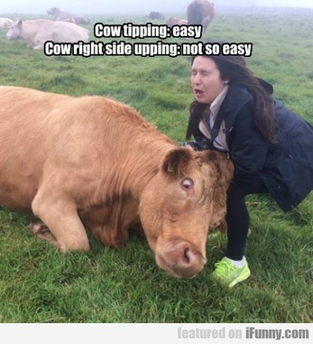Cow Tipping Easy Cow Right