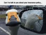 Can I Talk To You About Your Insurance Policy...