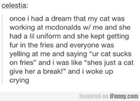 Once I Had A Dream That My Cat Was