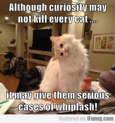 Although Curiosity May Not Kill Every Cat...