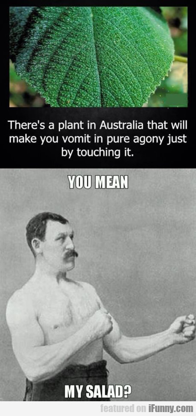 There's A Plant In Australia...