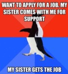 Want To Apple For A Job...