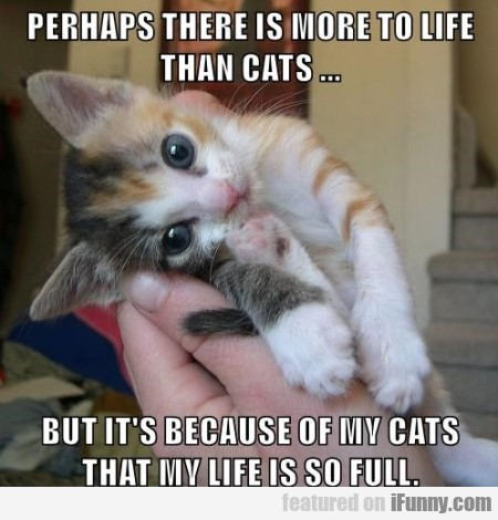 perhaps there is more to life...