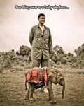 Yao Ming Next To A Baby Elephant...