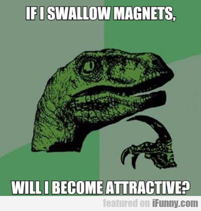 If I Swallow Magnets...