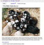 I Have 2 Dozen Goats I Need To Get Rid Of...