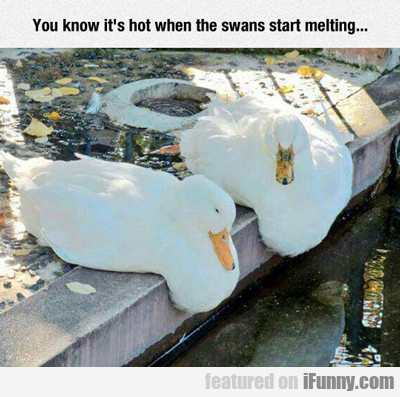 You Know It's Hot When...