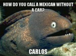 How Do You Call A Mexican Without A Car...