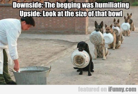 Downside - The Begging Was Humiliating...